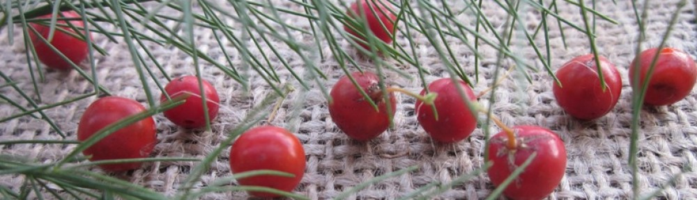 plodovi šparglja